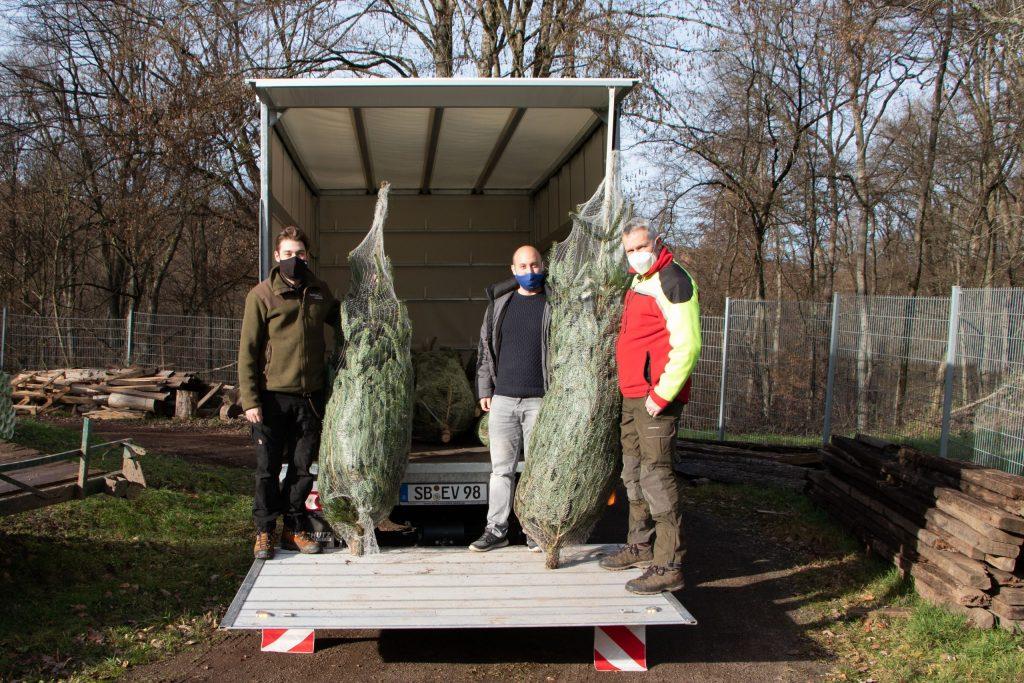 Übergabe von Weihnachtsbäumen